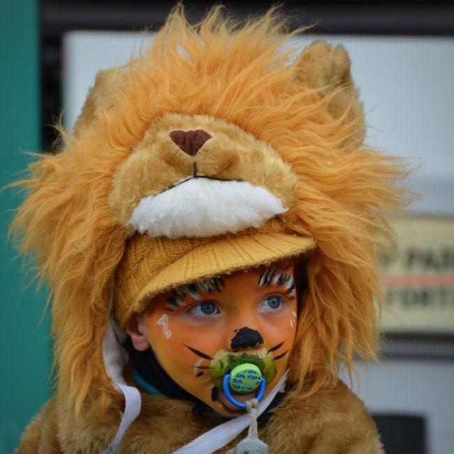 Löwenkind_pixabay
